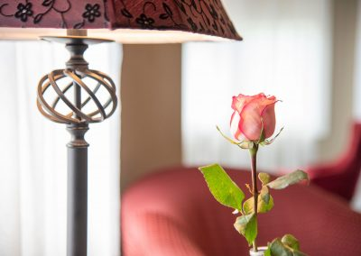 Suites Gazebo Lamp n Rose